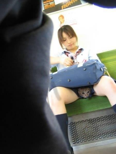 Кицька між ногами під мініюбкою в китаянки школярки