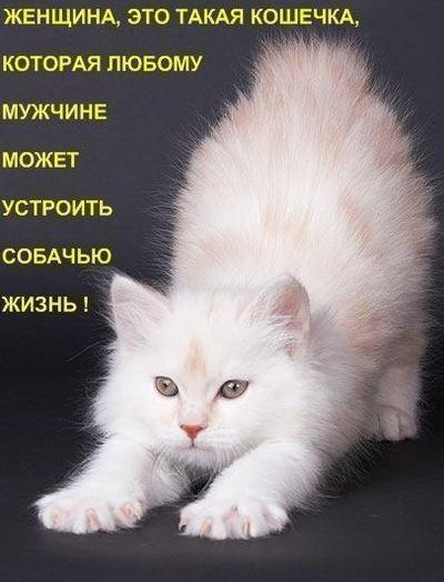 Ольга Александрова, 27 ноября 1995, Москва, id191976740