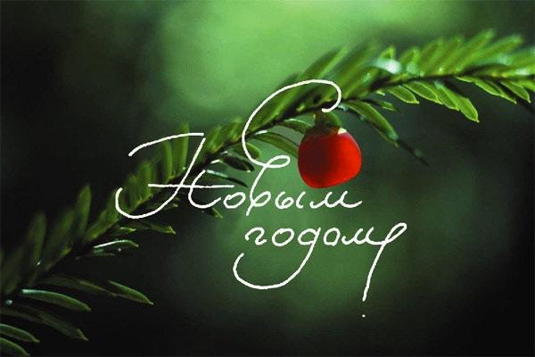 http://cs302107.vkontakte.ru/u25450509/-3/x_a9a24fd5.jpg