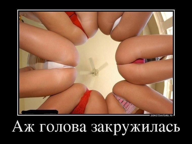Фото лица писи женщин том