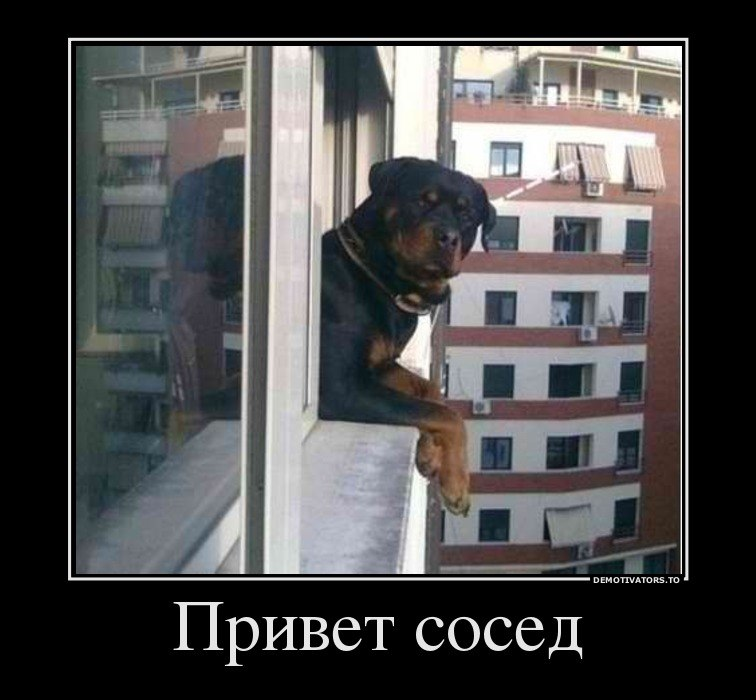 Лучший мобильный интернет в пос.пудость лен.обл.гатчинский р-н. обеспокоен, верит