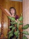 София Шулепова, Ношуль - фото №5