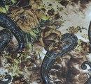 коричневые китайские огурцы