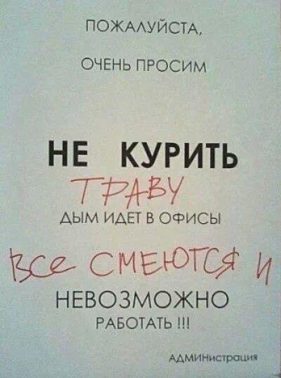 Эльмар Керимов, 8 октября , Москва, id119806868
