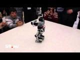 В Перми танцуют даже роботы