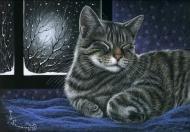 Кот, животные, спокойной ночи,настроение.