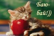 Кот,животные,баю-бай!,сладких снов!,приятных снов!,спокойной ночи!