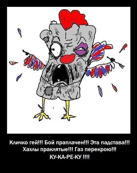 Украина будет в НАТО и Евросоюзе, это неизбежно, - глава Минобороны Польши - Цензор.НЕТ 8514
