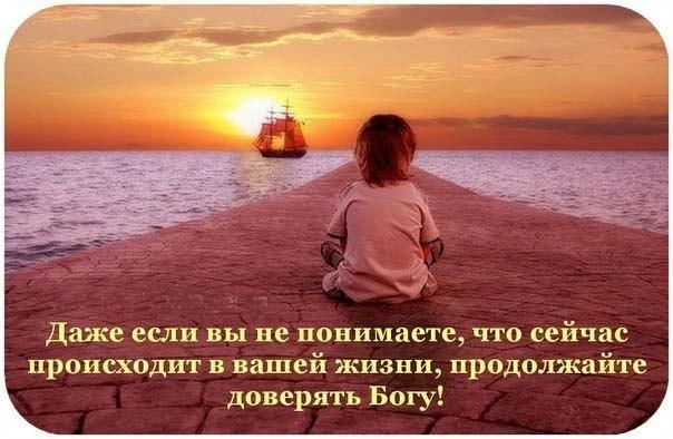 http://cs302510.vk.me/v302510384/6303/1-wqq1KNbUM.jpg