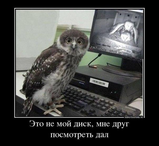 приколы 2012 смотреть онлайн бесплатно: