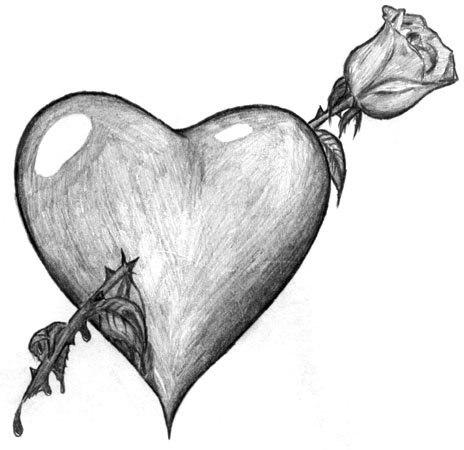 Рисунки розы карандашом