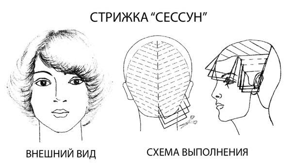 Схемы Мужских Стрижек
