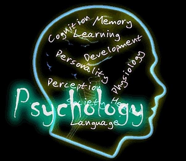 Отчет по праткике психолога на заказ