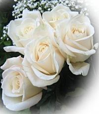 Алёна Игошева, 13 февраля 1996, Днепропетровск, id72744816