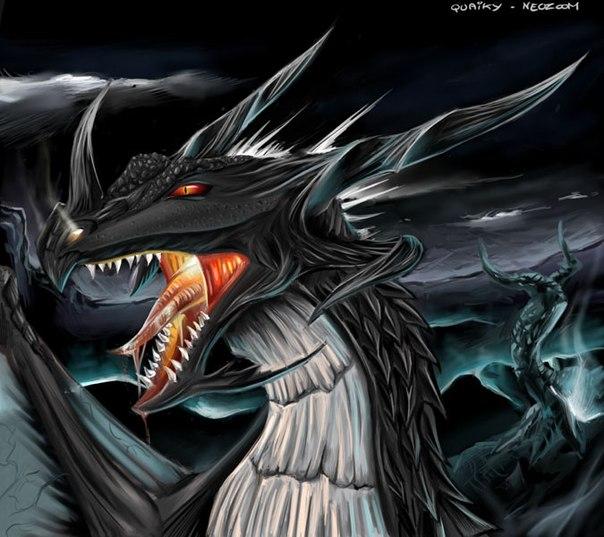 картинки чёрного дракона