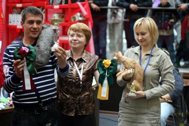 29-30 сентября 2012, Воронеж, ЧЕМПИОНАТ - Страница 3 Jn63MNxRo3Y