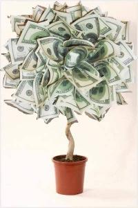Открытка денежное дерево