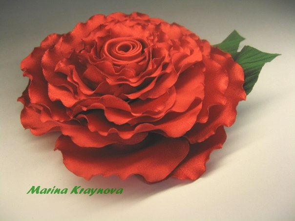Роза фламенко