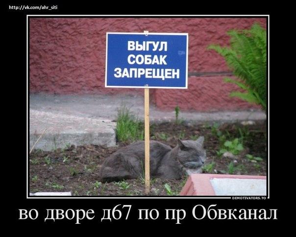 РЕЛАКСАЦИЯ))))) - Страница 5 IQUalnIkj80