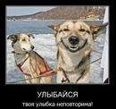 Фото Андрея Петухова №13