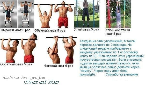 Программы упражнений на