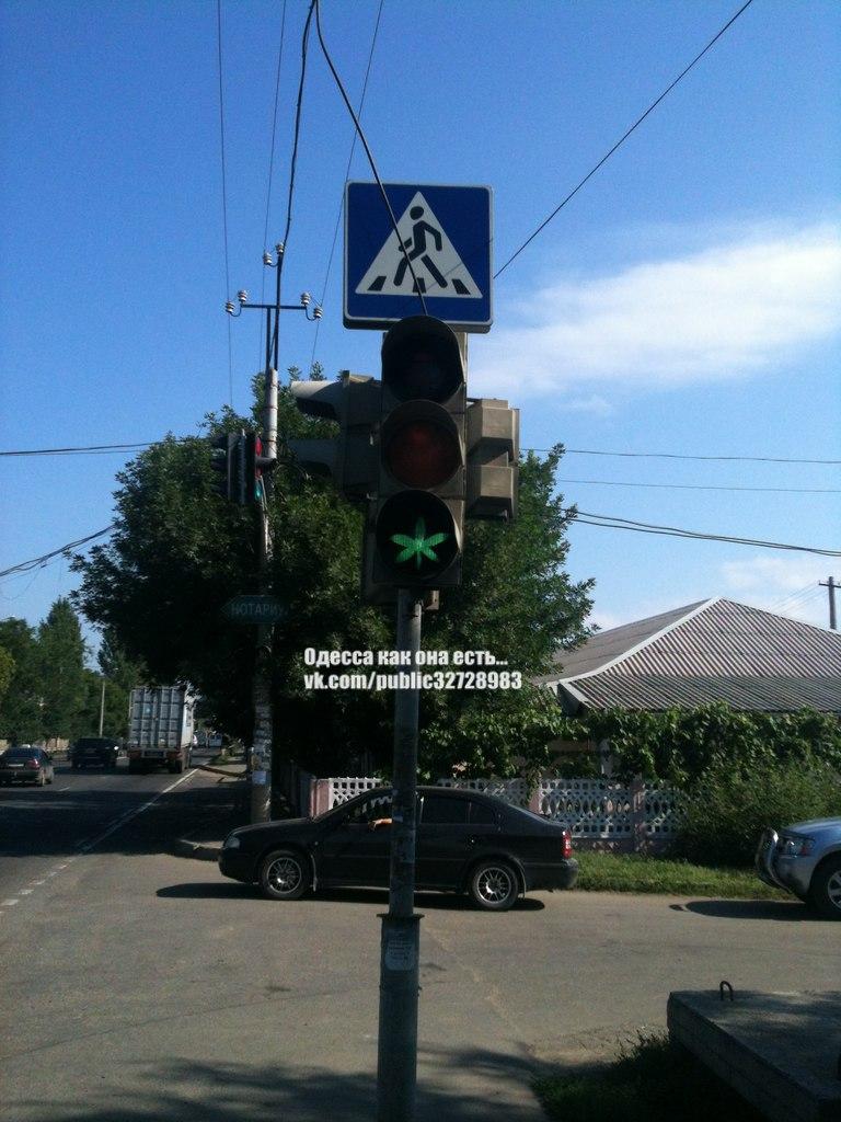 Одесский светофор загорается зеленым конопляным листком (Фотофакт), фото-2
