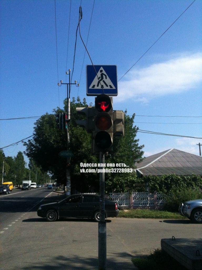Одесский светофор загорается зеленым конопляным листком (Фотофакт), фото-1