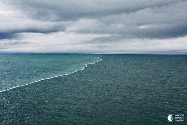Светлые воды Аляскинского залива