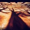 Студия рисования песком СэндПРО™ | Новый Арбат