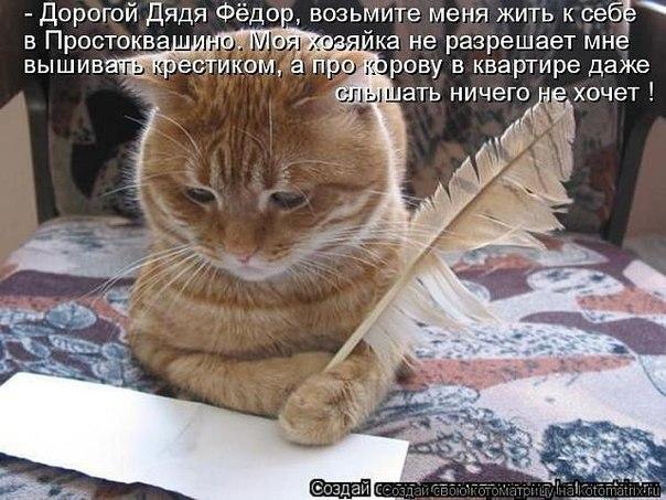 http://cs303206.vk.me/v303206944/c2f/LcBP_HU4rj0.jpg