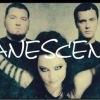 •|Evanescence|Skilet|Elvira T|Flyleaf|•