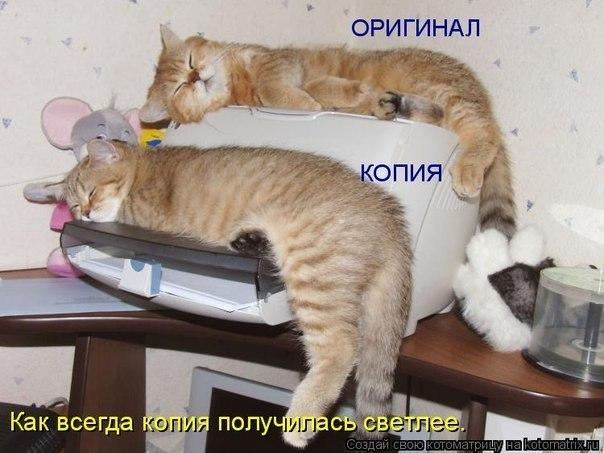 http://cs303213.vk.me/v303213683/27a6/3gU2j9qVVyg.jpg