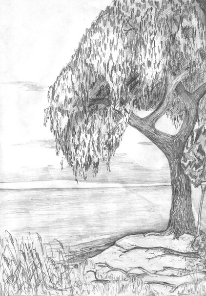 Картинки про лето нарисованные карандашами