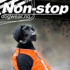 Снаряжение для ездового спорта Non-Stop DogWear