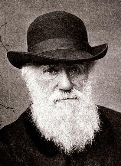 Чарльз-Роберт Дарвин, 12 февраля , Минск, id225475724