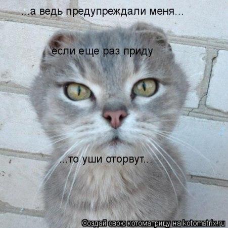 САМЫЕ ЖИЗНЕНЫЕ И КЛАССНЫЕ ПРИКОЛЫ)) | VK: vk.com/public37865391