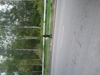 Паша Паша, 27 июля , Москва, id181878169
