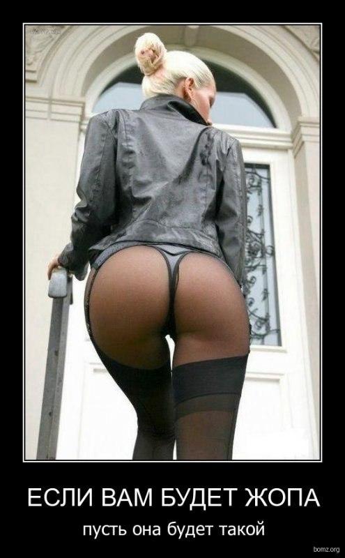 Без умысла красиаые женщины картинки со спины поворачивались телекамеры, провожая
