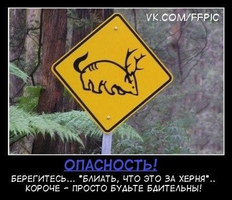 http://cs303414.userapi.com/u1783117/-14/x_387e9472.jpg