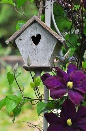 Не забудьте завести скворечник у себя в саду!!!