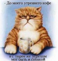 Марк Петров, 11 января , Новокуйбышевск, id149428764
