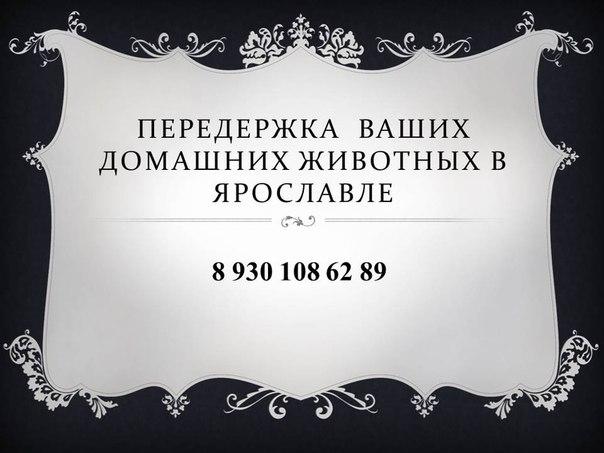 Срочно нужен займ - interzaim.ru