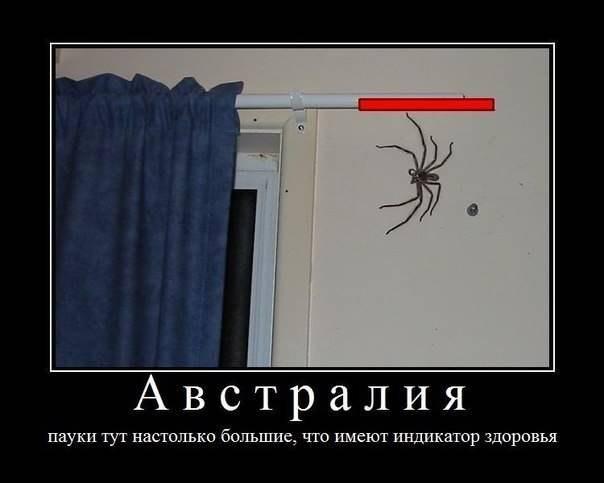 http://cs303514.userapi.com/v303514553/117de/xTh9-7LNBSo.jpg