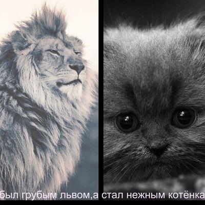 Дмитрий Носков, 22 октября 1999, Витебск, id149458174
