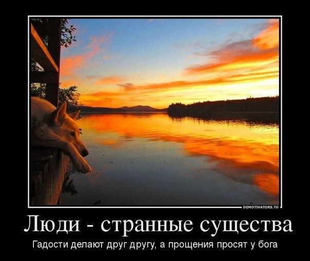 http://cs303602.vk.me/v303602564/596b/ndFWDfBaKp0.jpg