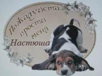 Сергей Ломонос, 20 декабря 1998, Донецк, id186116519