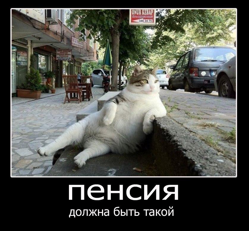 Десять комиксы про волков на русском разбудил