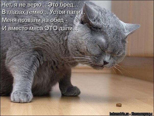 http://cs303613.vk.me/v303613753/3a59/MklQG1cN1Fg.jpg