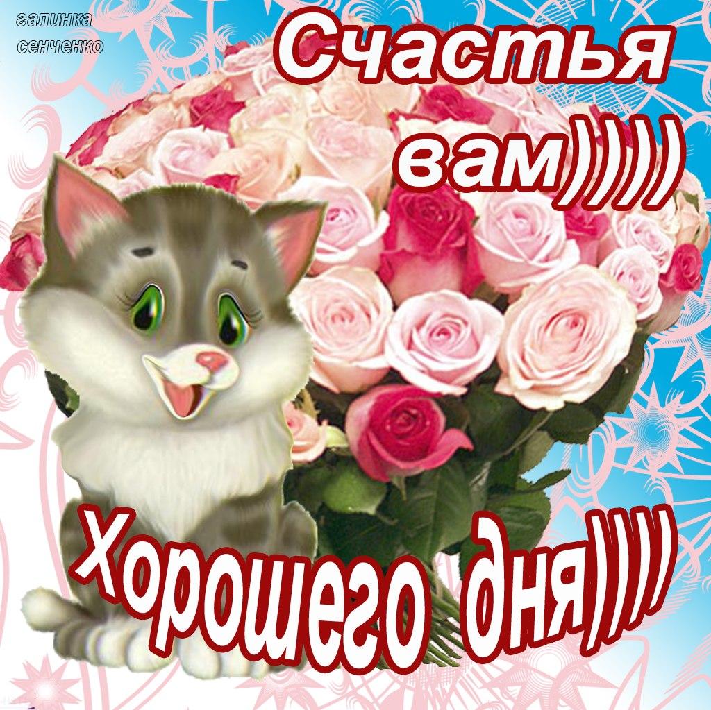 http://cs303702.vk.me/v303702864/4496/e3k9z_tU7_A.jpg