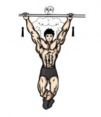 Многие новички, приходящие в спортзал с целью накачать мышцы, не любят или даже избегают подтягиваний на турнике.